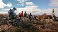 Mountain Bike Adventure in Punta Arenas