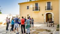 Create your Own Cava Workshop in Barcelona Province