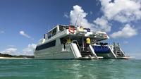 Eco Cruise - Boom netting & Snorkeling Moreton Island - Departing Bunk Brisbane