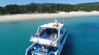 Eco Cruise - Boom netting, snorkeling and swimming Moreton Island
