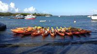 Sunset Bioluminescent Lagoon Kayak Adventure