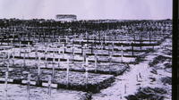Tyne Cot Cemetery in 1919*