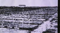 Visite en petit groupe consacrée au champ de bataille australien à Fromelles et en Flandre au départ