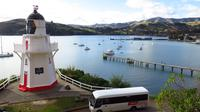 7-Hour Christchurch Tour from Akaroa Wharf