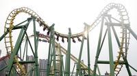 Rollercoaster*