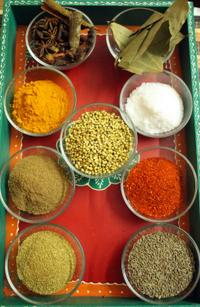 Authentic Indian Cooking Class