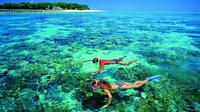 4-Day Cairns with Great Barrier Reef and Daintree Rainforest