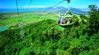 5-Day Best of Cairns Including Daintree Rainforest, Kuranda and Great Barrier Reef