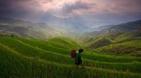 Bus Tour: Longji Rice Terraces and Local Minority Village Tour