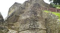 Belize City and Altun Ha Mayan Site Tour