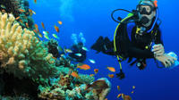 6 Dive Package at Ras Mohamed and Tiran Strait
