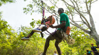 Zipline Canopy Tour in Jaco