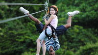 Roatan Ziplines, Beaches and Monkey Park