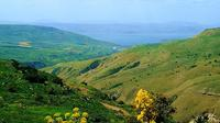 Private Tour: Sea of Galilee Day Tour from Jerusalem Tel Aviv or Haifa