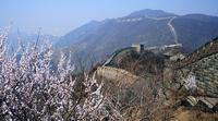Private Two-Day Beijing Cultural Tour - Soul of Beijing