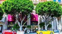 Private Los Angeles City Tour