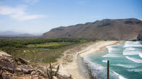 Todos Santos Pacific Bluffs Hike Including Picnic Lunch