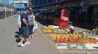 Half-Day Coral Coast Tour of Traditional Fiji from Denarau or Nadi