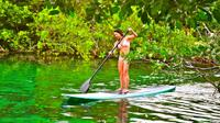 Private Tour: Stand Up Paddleboarding and Snorkeling in Tulum