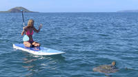 Private 2-Hour Beginner Paddleboarding 101 from Maui