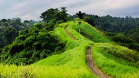 Private Tour: Campuhan Ridge Walk and Sightseeing in Ubud