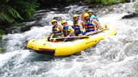 Telaga Waja River White-Water Rafting with Buffet Lunch