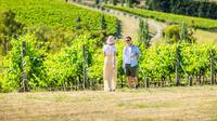 Yarra Valley Small-Group Gourmet Food and Wine Tour from Melbourne or Yarra Valley