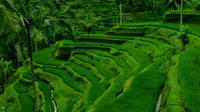 Full-Day Bali Tour with Cultural Performance and Buffet Lunch