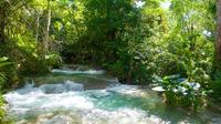 Mayfield Falls Tour from Negril