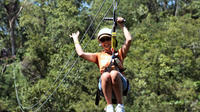 Montego Bay Shore Excursion: Zipline Adventure Plus City Highlights