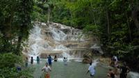 Nine Mile and Dunn's River Falls Day Trip from Montego Bay