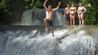 Private YS Falls and Black River Safari from Negril