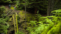 Mountain Biking Near Olympic National Park