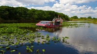 Everglades Air Boat Ride and Alligator Tour from Miami or Fort Lauderdale Port or Airport Private Car Transfers