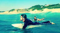 Day Surf Trip around Biarritz