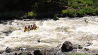 Full-Day Upper Klamath Rafting Trip