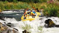 Half-Day Rogue River Rafting