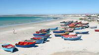 Cape West Coast Private Day Tour