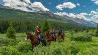 3-Day Stoney Creek Backcountry Tent Trip by Horseback