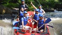 Bali Rafting and Ubud Tour