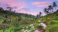 Ubud Rice Terraces Temples and Volcano