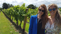 English Wine Tasting Tour to Sussex from London