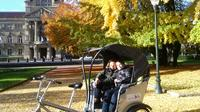 Sightseeing Tour of Strasbourg by Pedicab