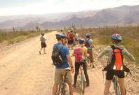 3-Day Tour of Cachi, Laguna Brealito and National Park Los Cardones