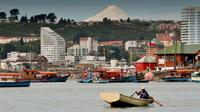 Shore Excursion: Private City Tour of Puerto Montt and Puerto Varas