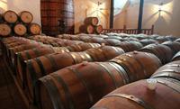 Wine Tour of Viña Almaviva