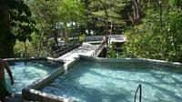 Full-Day Adventure: Natural Hot Spring with Mud Horseback Riding and Canopy Tour From Playa Hermosa