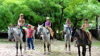 Horseback Riding Jungle and Beach in Playa Flamingo