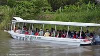 Palo Verde Wildlife Tour from Tamarindo