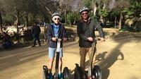 Excursión para grupos pequeños: Centro de Sevilla y Plaza España en Segway